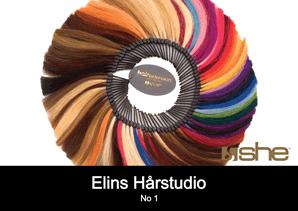 Hair extensions farger SHE So Cap frisør Sandefjord Elins Harstudio