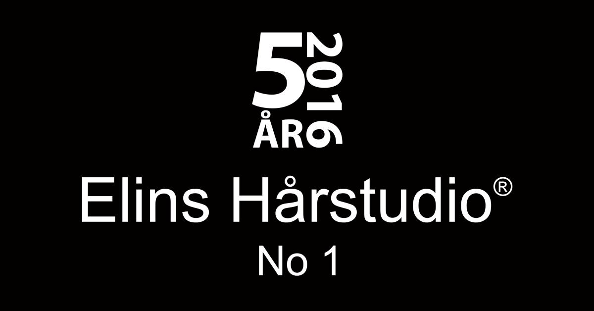 Elins Hårstudio No 1 5 år 2016