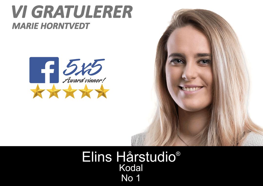 Elins Hårstudio Facebook Award Vinner Marie Horntvedt