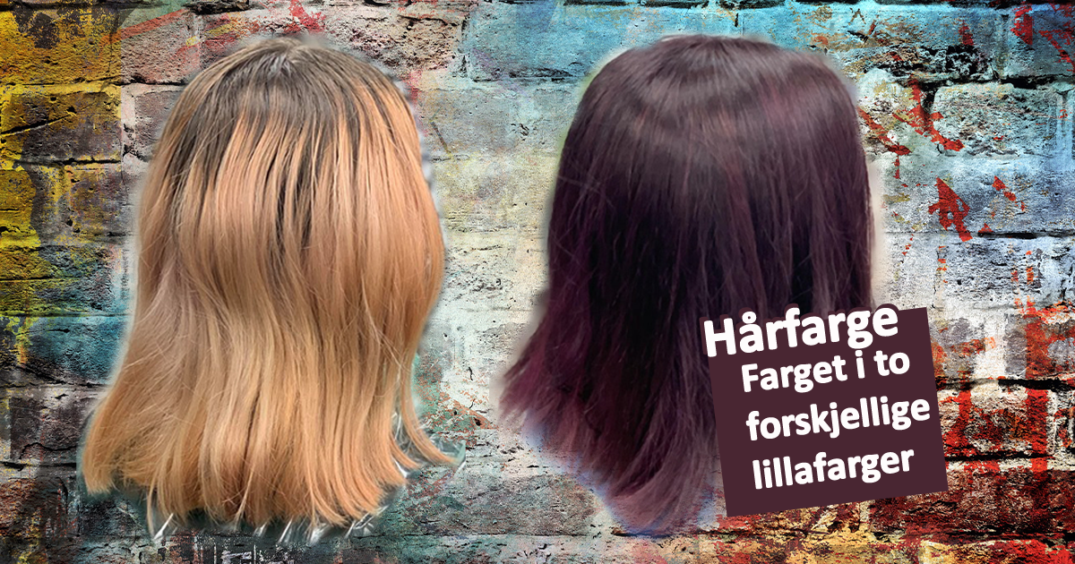 Hårfarge - farget håret i to forskjellige lillafarger